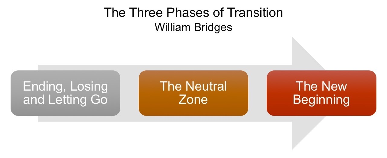 phases_of_transition